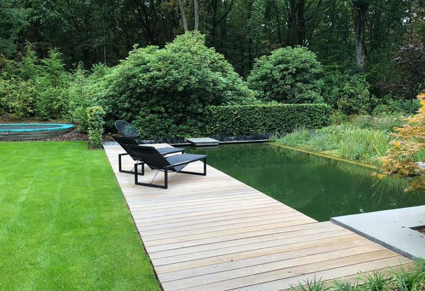 Modern en strak Natuurzwembad in Heerde