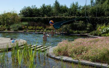 Stappenplan zwemvijver aanleggen - header